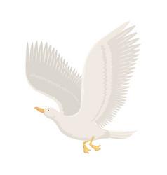 cartoon gull flying bird vector image vector image