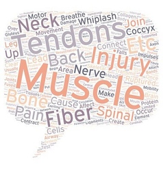 Back Pain and Tendons text background wordcloud vector image vector image
