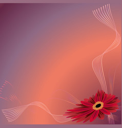 Card with the red gerbera vector