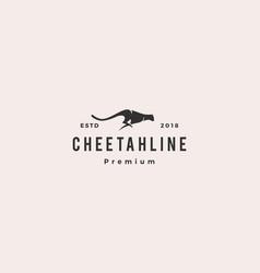 cheetah logo vector image