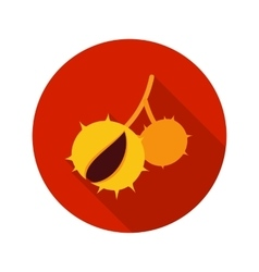 Chestnut flat icon with long shadow vector
