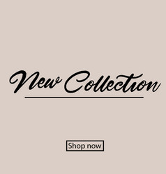 new collection hand lettering handmade vector image