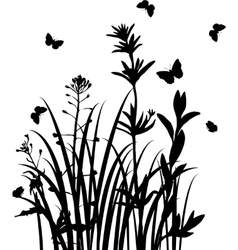 silhouettes wild herbs and flowers vector image