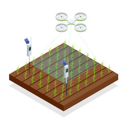 Use a drone to control crop growth hydration vector