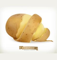vegetable potato peel spiral food vector image vector image