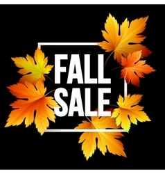 Autumn seasonal sale banner design Fal leaf vector