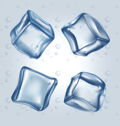 ice cubes set vector image