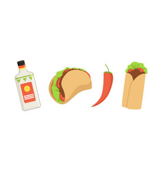 Mexican burrito taco and tequila bottle vector