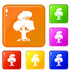 oak icons set color vector image