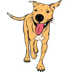 Painted redhead walking american pit bull vector