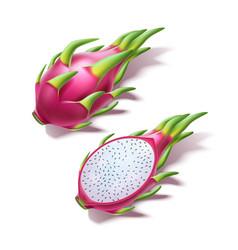 realistic pitahaya dragon fruit pitaya 3d vector image