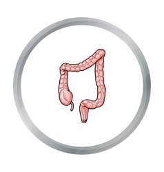 Human large intestine icon in cartoon style vector
