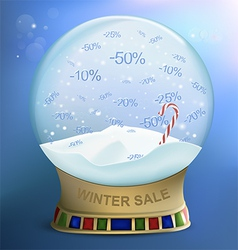 Snow globe discounts vector image