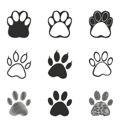 Paw icon set vector image