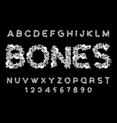 bones font letters anatomy skeleton abc skull and vector image