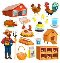 poultry farm elements set vector image