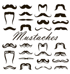 set mustaches vector image