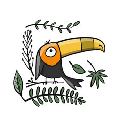 toucan paradise tropical bird for your design vector image