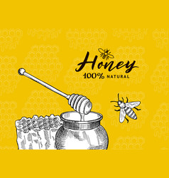 background with sketched contoured honey vector image