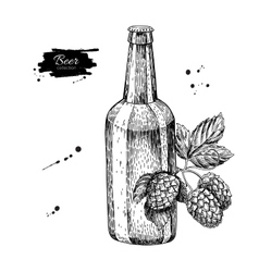 Beer glass bottle with hop Sketch vector image vector image
