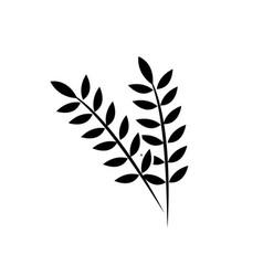 contour healthy wheats organ plant nutricious vector image vector image