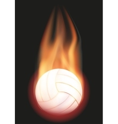 Volleyball ball with flame vector image