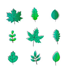 leaves bright decor elements for the banner vector image