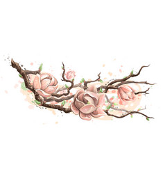blooming magnolia wall sticker artistic color vector image