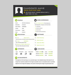 Corporate resume vector