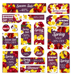 flowers tags for spring sale vector image