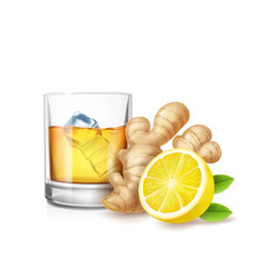 ginger ale realistic vector image