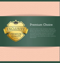 premium choice exclusive on vector image