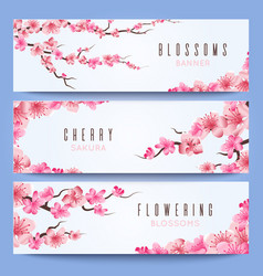 Wedding banners template with spring japan sakura vector