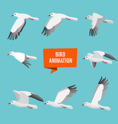 key frames of animation flying bird vector image vector image