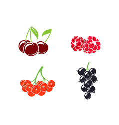 berries abstract fruit on white background vector image