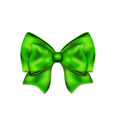 freen silky bow on a white background vector image