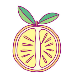 cute drawn fruit clipart vector image