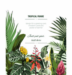 frame with monstera and palm leaves vector image