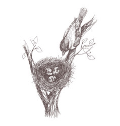 Hand drawn nest with vector