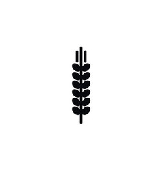 isolated barley icon spike element can be vector image