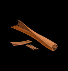 Stick of cinnamon fragrant spice vector