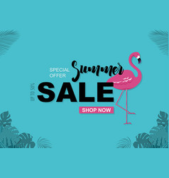summer sale background with flamingo vector image