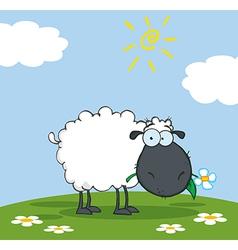 Black Sheep Cartoon Character Eating A Flower vector image vector image