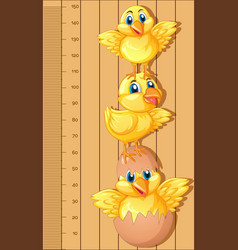 growth chart ruler with little chicks vector image