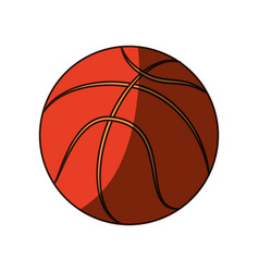 isolated basket ball vector image vector image