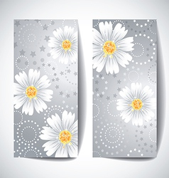 Two banners with daisy flowers on white background vector image vector image