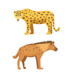 cute jaguar and hyena stands vector image