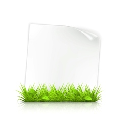 Grass and paper vector image vector image