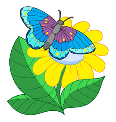 Butterfly on yellow flower vector