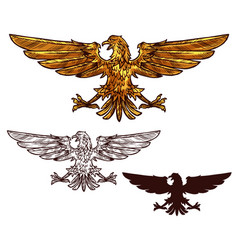eagle or hawk heraldic golden bird vector image